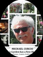 Michael Curcio